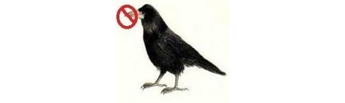 Piege corbeau peyraud nature chasse - Piege a pigeon ...